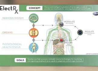 имплант на DARPA
